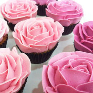 Mini Ombre Rose Cupcakes